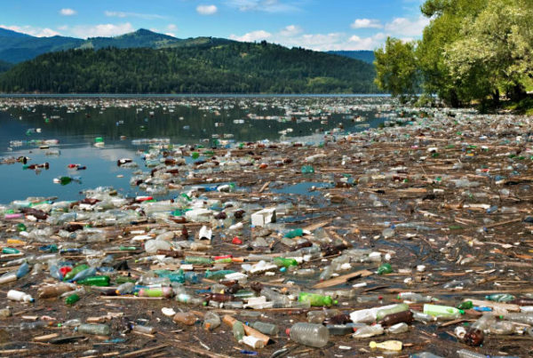 GreenHubAfrica and DuPont partner to Tackle Nigeria's Polluted Coastal Areas
